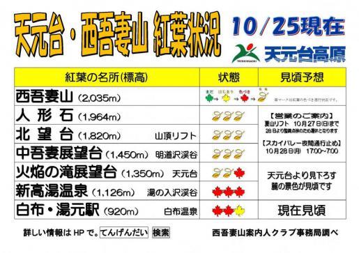 2019/10/25 13:26/西吾妻山天元台紅葉情報(予想)10月25日更新