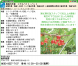 【アルバイト募集】さくらんぼ&いちご農作業_2019年:2019/05/23 10:10