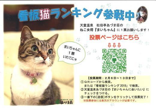 「全国の宿 自慢の看板猫ランキング」結果発表/