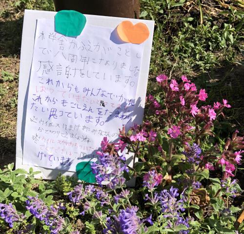 「おかげさまで桜舎かふぇ8周年です」の画像