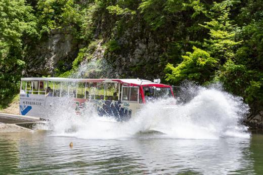 延長決定!水陸両用バス 8月の予約開始のお知らせ/