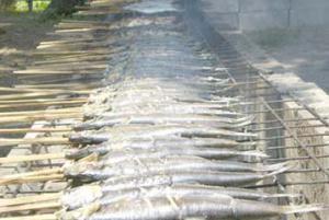 「新庄カド焼きまつり」の画像