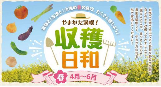 やまがた満喫!収穫日和【春】開始のお知らせ/