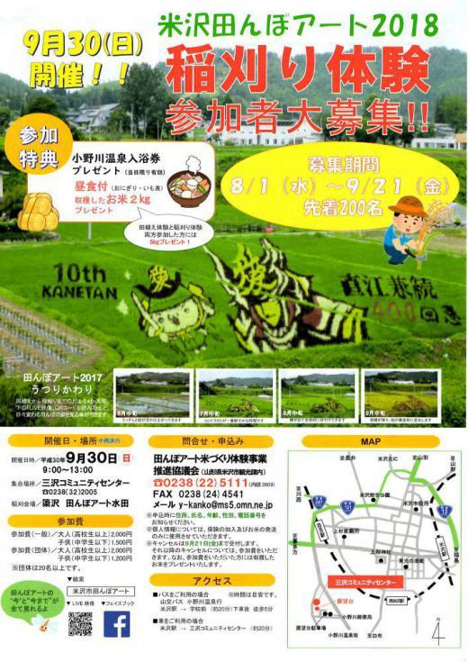 Rice Paddy Art Harvest! /