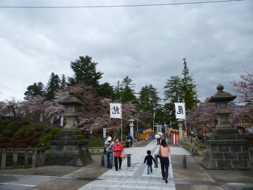 2012年松が岬公園(上杉神社)桜情報4月27日(金)/
