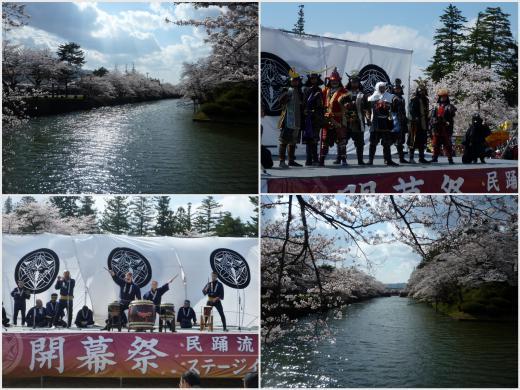2013年松が岬公園(上杉神社)桜情報4月28日(日)満開/