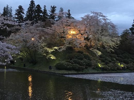 2019-4-25 上杉神社の桜/
