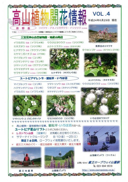 高山植物開花情報/