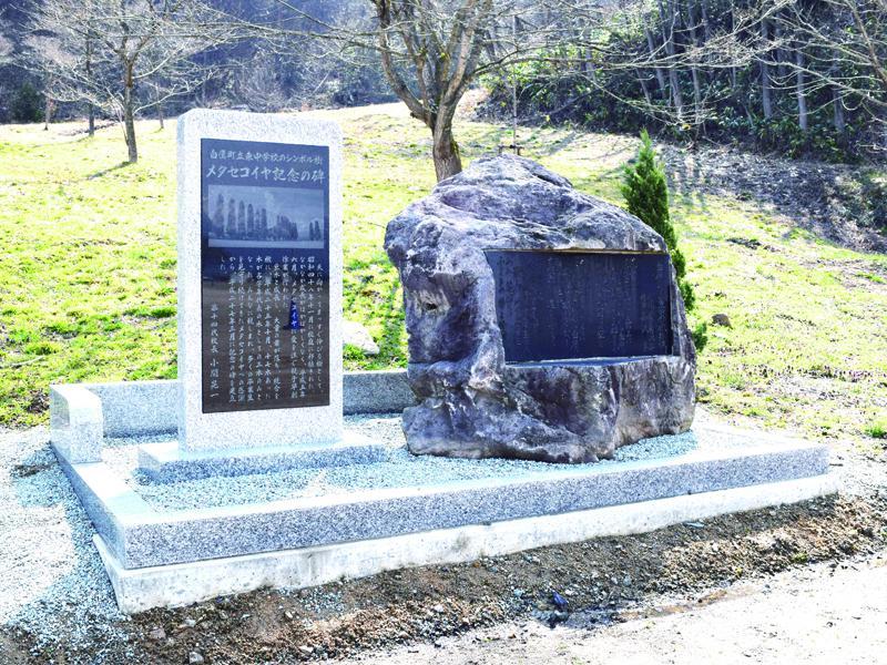 メタセコイヤ記念の碑