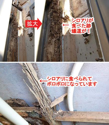 【屋内リフォーム】白あり防除工事  名取市S様邸:画像