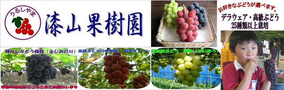 「漆山果樹園」の画像