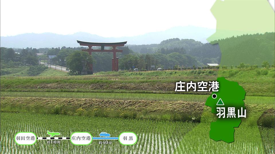 【#1168】羽黒山 生まれかわりの旅〜鶴岡市(7月1週):画像