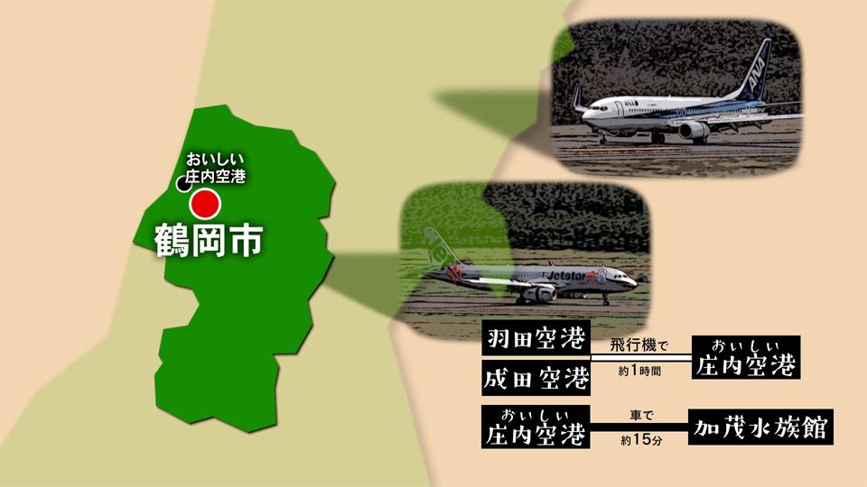【#1332】(再)クラゲの水族館〜鶴岡市(2月3週):画像