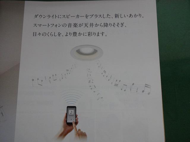 天井から降り注ぐ心地よいサウンド♪♪:画像