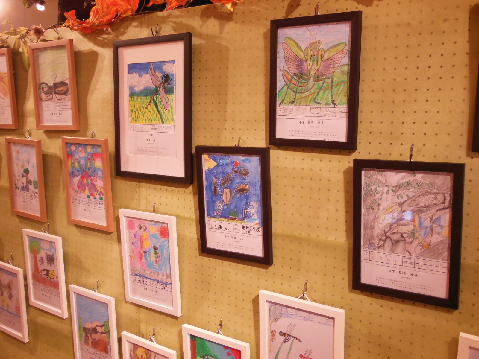 秋の企画展「虫の絵展」「虫の音楽会」 始まりました。:画像