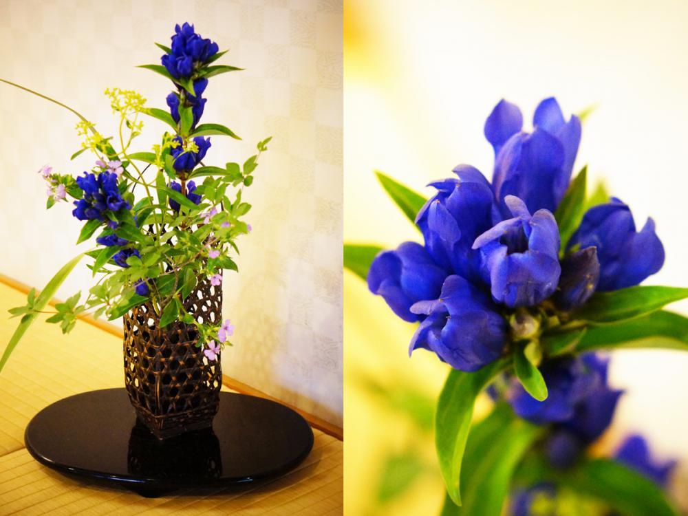 ★花に寄せて(8月)【日本の宿 古窯】:画像