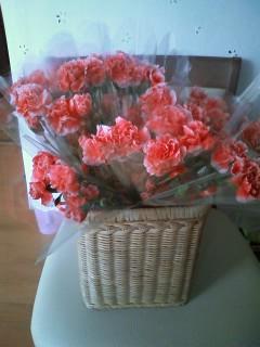 2010/12/24 09:17/12月のお花の日