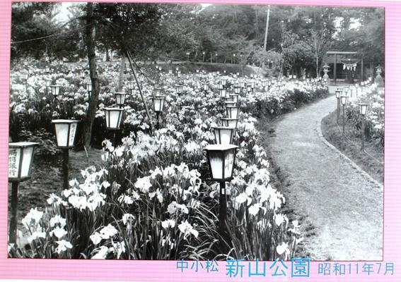 新山神社(小松城止)その2