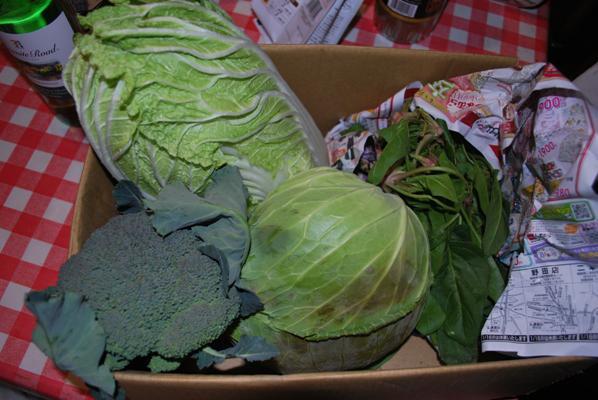 野菜の頂き物(激甘キャベツに白菜)