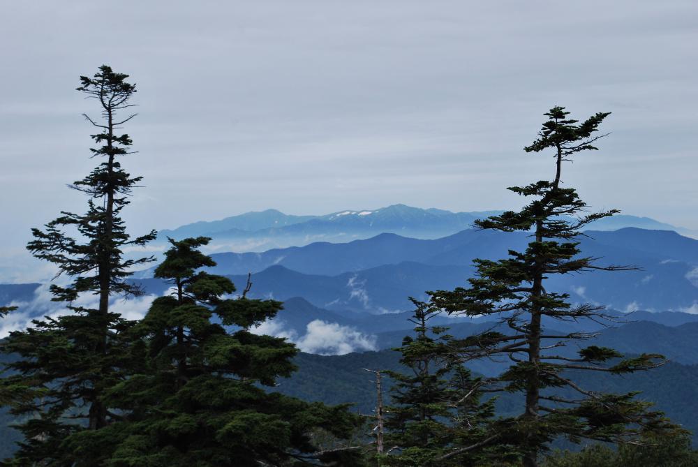 北望台の雲海