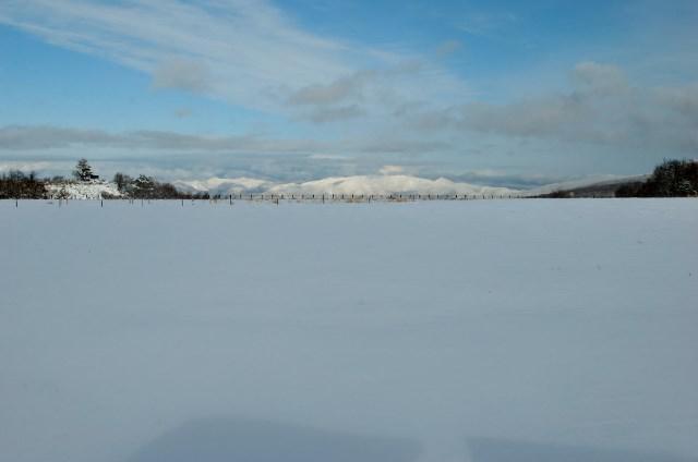 雪だもうすぐスキーだ