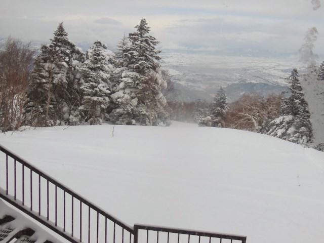 天元台は超粉雪