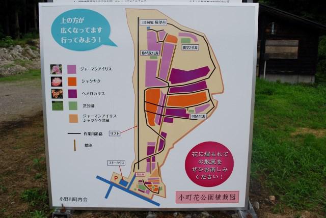 小町花公園
