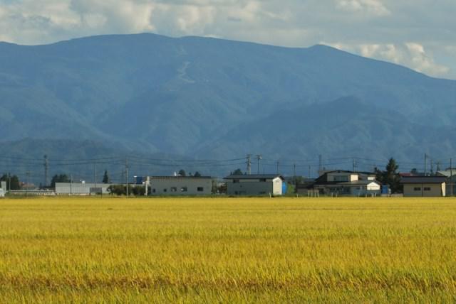 東江股から西吾妻山
