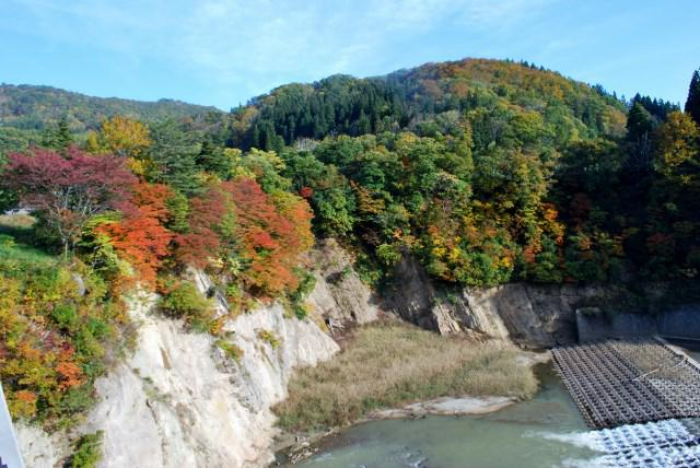 源流の森周辺の紅葉見ごろ