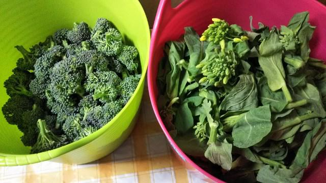 頂き物野菜