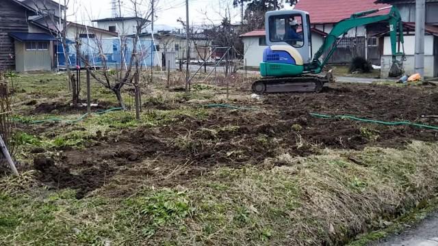 果樹の移植