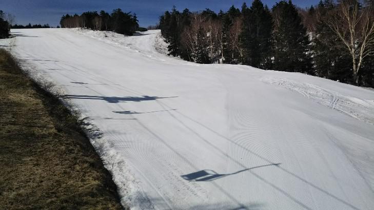天元台高原スキー場