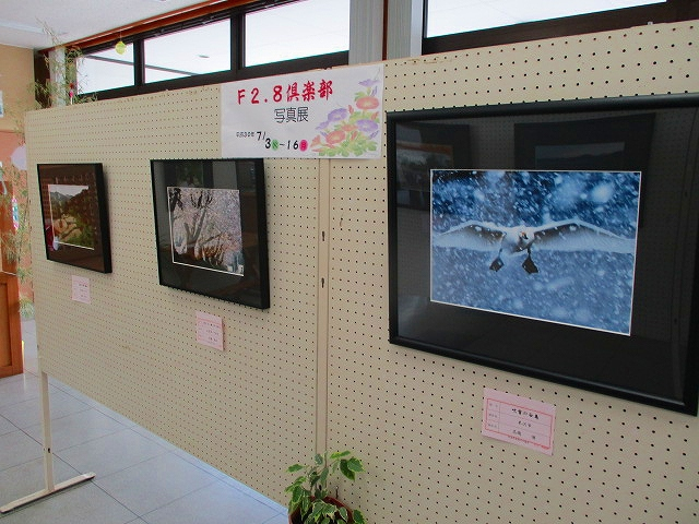 """F2.8 club photo exhibition"" is held ♪ : Image"