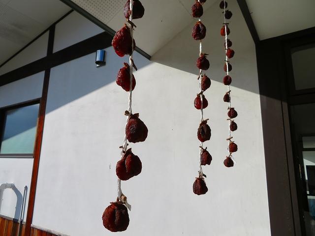吊るし干し柿:画像