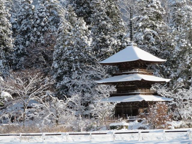 冬の訪れ:画像