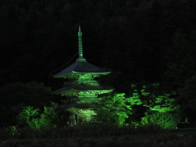 三重塔ライトアップ中です☆:画像