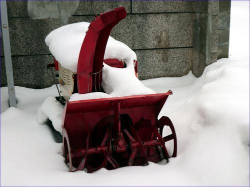 ◆寒波の前に◆