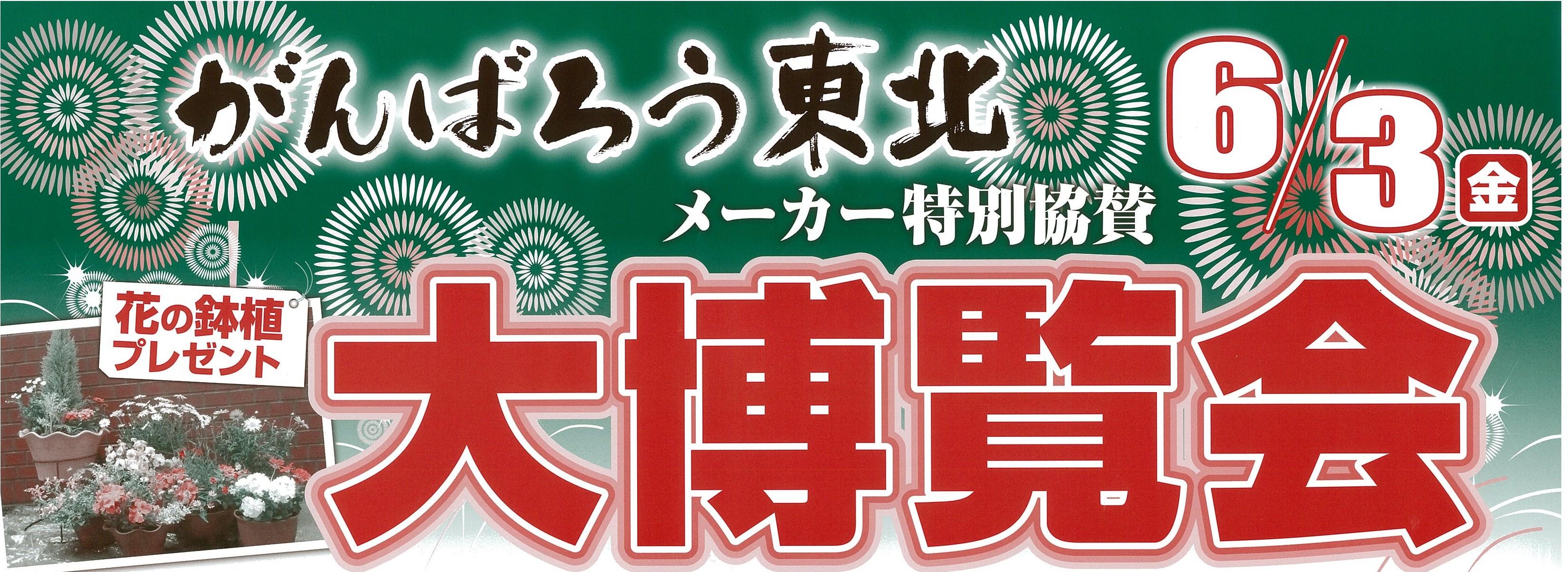 【6/3】夏物大博覧会!:画像