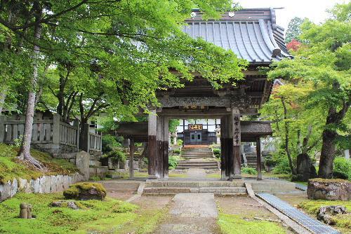 鶴の恩返しでよく知れた珍蔵寺に咲いていました なんという花でしょうか/