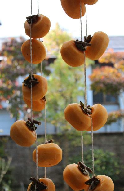 秋の風物詩 干し柿ののれん 我が家の軒先にも干し柿がつるされました