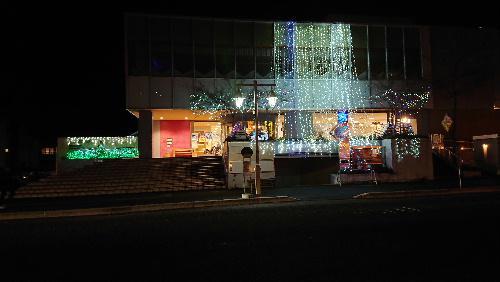 夜に咲く花 12月の夜を彩るイルミネーション 南陽市エクボプラザ