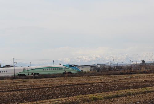 田んぼには全く雪がない 白い山を背景に新幹線が走る サギが飛ぶ 今日は令和2年1月12日