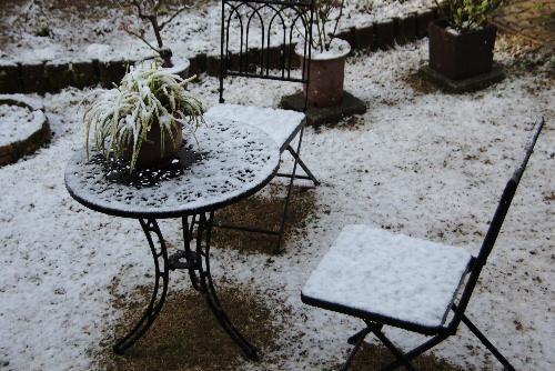 今日は朝から雪が降っています 寒い一日でした