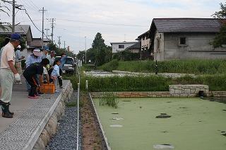 東根市長瀞地区で「お堀跡」の池をEMで浄化活動