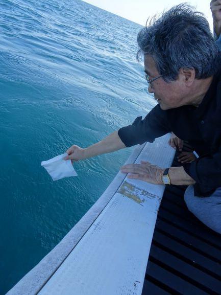 妻はマンタ、いやジュゴンに変身し、サンゴ礁の海へ