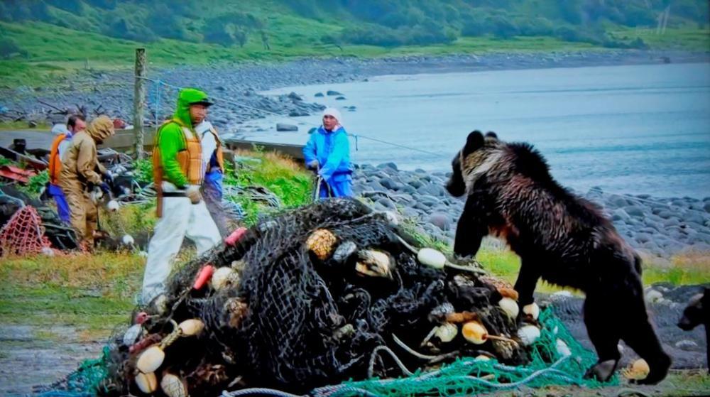 ヒグマと漁師
