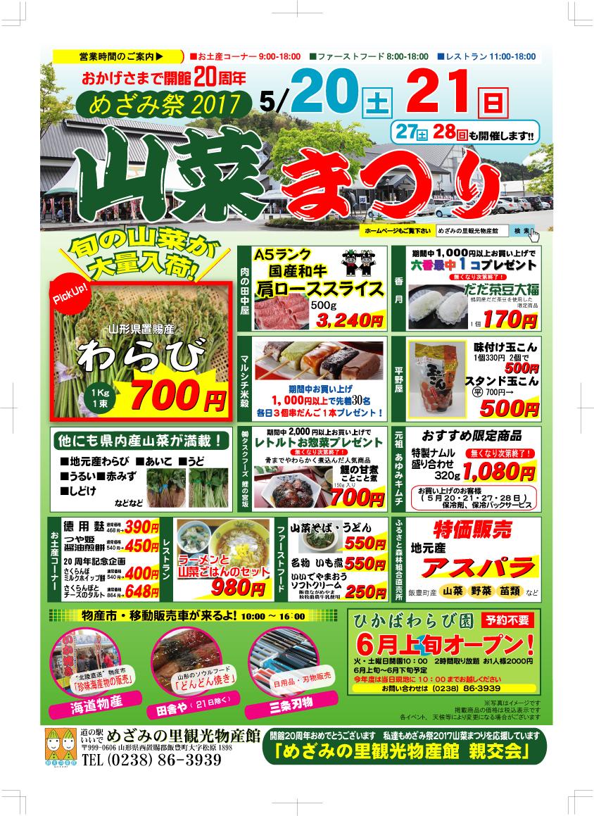 今年も山菜!!:画像