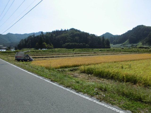 ★。★美蔵の田んぼも稲刈りがはじまりました・・・美蔵