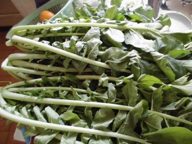 ★。★今、野菜が高いので・・・美蔵
