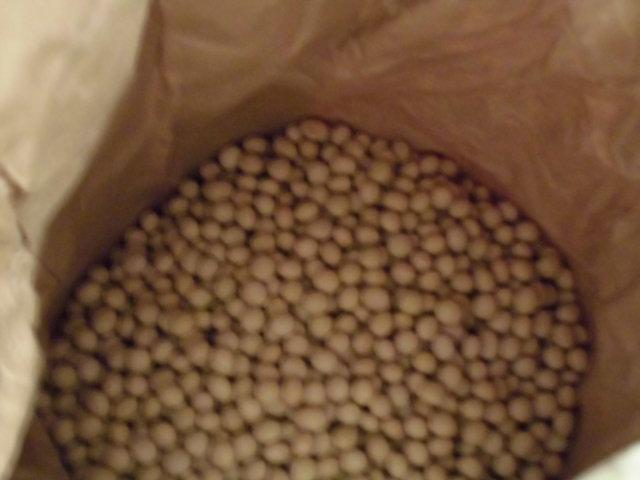 ★。★大豆のおばけ???・・・美蔵